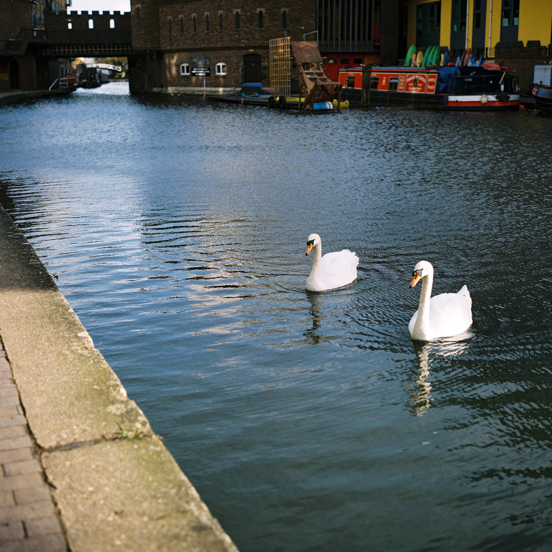 canal_winter_10